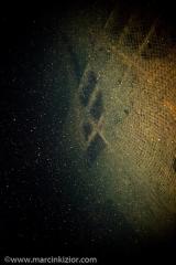 baltic_diving_0809_0011.jpg