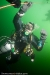 baltic_diving_0809_0017.jpg